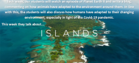 Planet Earth 2 – Islands – Michael McCoy