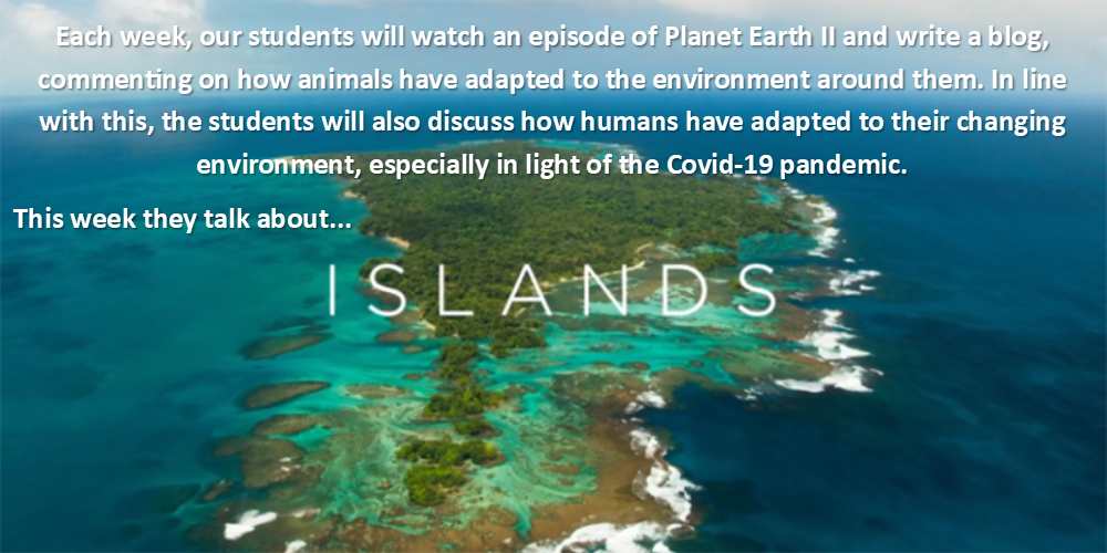 Planet Earth 2 – Islands – Aoibhe McCarron