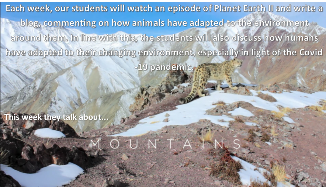 Planet Earth 2- Episode 2 (Mountains) – Aine Mallon