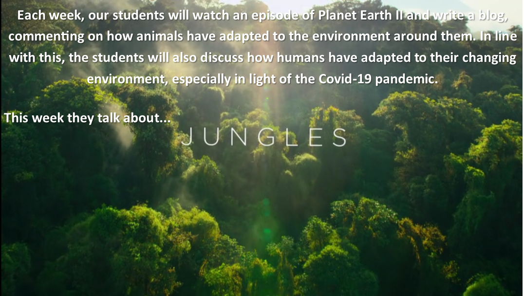 Planet Earth 2 – Jungles – Aine Mallon